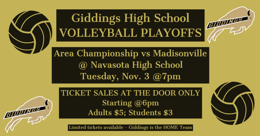 VB Playoffs - Madisonville